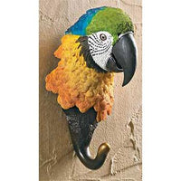Multi Colored Parrot Wall Hook