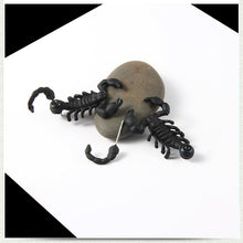 Load image into Gallery viewer, Black Scorpion 2 Piece Stud Earrings