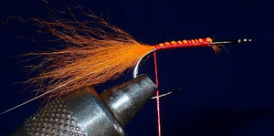 Fly of the Month – Thunder Creek Minnow