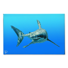 Load image into Gallery viewer, Great White Shark Canvas Print Shark Art