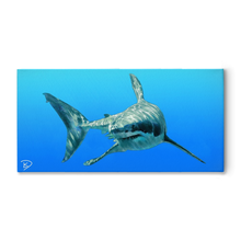 Load image into Gallery viewer, Shark Art Great White Shark Canvas Shark Wall Art