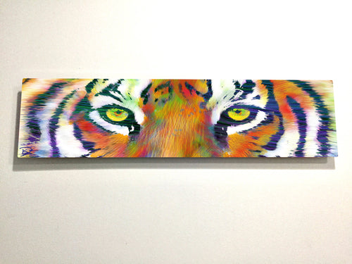Tiger Eye Aluminum Print