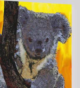 Koala Bear Canvas Print