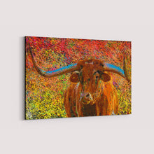 Load image into Gallery viewer, Texas Longhorn Canvas Print