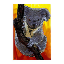 Load image into Gallery viewer, Koala Bear Canvas Print