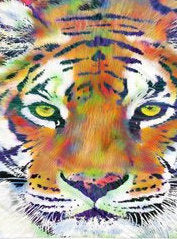 Tiger Beach Towel Tiger Linen Tiger Beach Decor