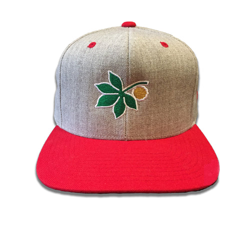 Ohio State Hat Snapback Hat Embroidered Baseball Cap Embroidery Mens