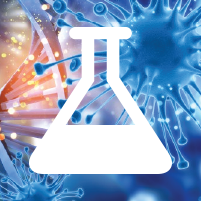 Deoxy Big CHAP