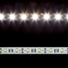 Load image into Gallery viewer, Environmental Lights Precision 2835 LED Strip Light - 5,000K - 60/m - 5m Reel from OnSetLighting.com