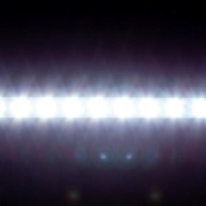 Environmental Lights High Efficacy 2835 LED Strip Light - 6,500K - 80/m - CurrentControl - Sample Kit from OnSetLighting.com