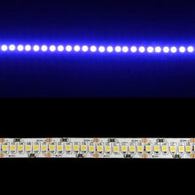 Load image into Gallery viewer, Environmental Lights Blue 3528 Single Row LED Strip Light, 240/m, 10mm wide, by the 5m Reel from OnSetLighting.com