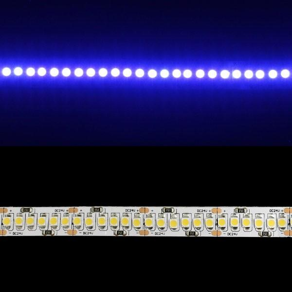 Environmental Lights Blue 3528 Single Row LED Strip Light, 240/m, 10mm wide, by the 5m Reel from OnSetLighting.com