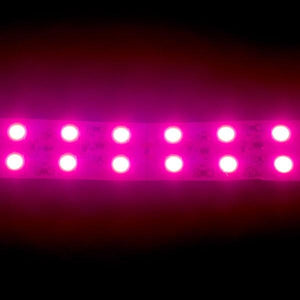 Environmental Lights Pink 5050 Double Row CurrentControl LED Strip Light, 120/m, 20mm wide, Sample Kit from OnSetLighting.com