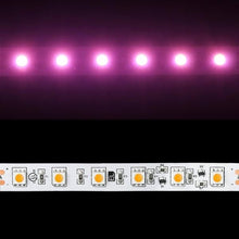 Load image into Gallery viewer, Environmental Lights Pink 5050 Single Row CurrentControl LED Strip Light, 60/m, 12mm wide, by the 6m Reel from OnSetLighting.com