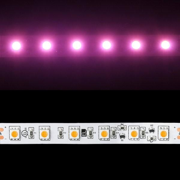 Environmental Lights Pink 5050 Single Row CurrentControl LED Strip Light, 60/m, 12mm wide, by the 6m Reel from OnSetLighting.com