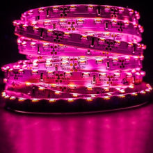 Load image into Gallery viewer, Environmental Lights Pink 3014 Side View LED Strip Light, 96/m, 8mm wide, by the 5m Reel from OnSetLighting.com