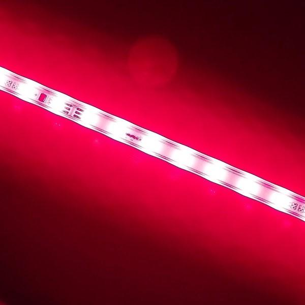 Environmental Lights LED High Brightness Dimmable Grow Light (24 inch) (Red 660 nm) from OnSetLighting.com