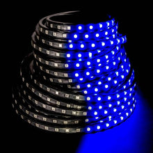 Load image into Gallery viewer, Environmental Lights Blue 5050 LED Super Flat Rope, 60/m, with Black Finish, by the 20m Reel from OnSetLighting.com