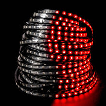 Load image into Gallery viewer, Environmental Lights Red 5050 LED Super Flat Rope, 60/m, with Black Finish, by the 20m Reel from OnSetLighting.com