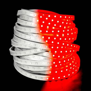 Environmental Lights Red 5050 LED Super Flat Rope, 60/m, with White Finish, Sample Kit from OnSetLighting.com