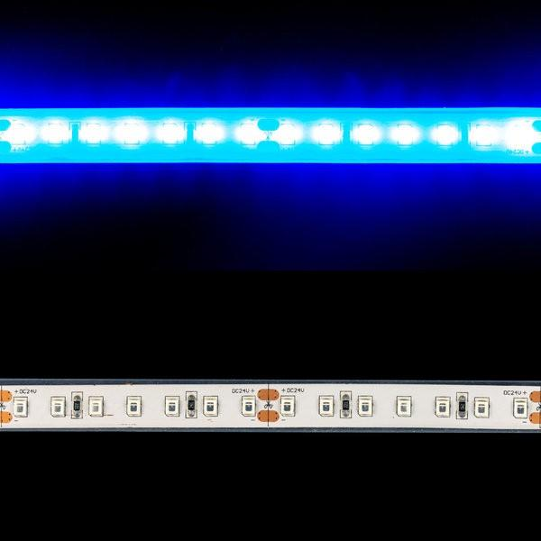 Environmental Lights Waterproof Performance 2835 LED Strip Light - Blue - 112/m - 5m Reel from OnSetLighting.com