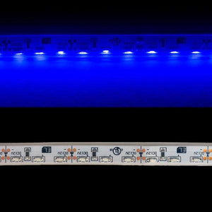 Environmental Lights Waterproof Blue 3014 Side View LED Strip Light, 96/m, 8mm wide, Sample Kit from OnSetLighting.com