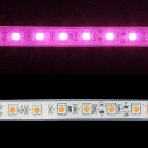 Environmental Lights Waterproof Pink 5050 Single Row CurrentControl LED Strip Light, 60/m, 12mm wide, by the 6m Reel from OnSetLighting.com
