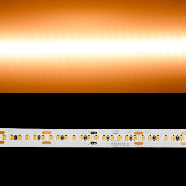 Environmental Lights Warm White 2216 TruColor LED Strip Light, 240/m, 10mm wide, by the 5m Reel from OnSetLighting.com