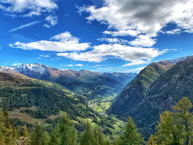 Austria is a beautiful country to wander, whether you're meandering the city streets of Vienna, Salzburg, Hallstatt, and Innsbruck, or hiking trails in Kalkalpen National Park, Hohe Tauern National Park, and among its many vineyards
