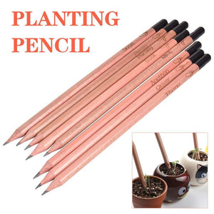 Grow Pencil: a pencil you can plant