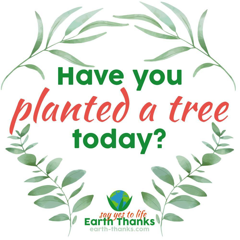 Have you planted a tree today? - Eco Tote Bag - Earth Thanks - Have you planted a tree today? - Eco Tote Bag - accessories, apparel, bag, city wear, compostable, cotton, cotton fiber, cotton twill, eco shoppers, fashion, handbag, non toxic, organic, organic cotton, outdoor, picnic, plastic free, portable, purse, recyclable, recycle, recycle friendly, reusable, shopper, shoulder bag, street wear, tote bag, travel, travel bag, traveling bag, unisex, vegan friendly, wardrobe, woman, women