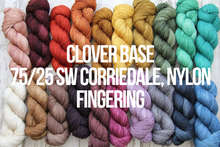 Load image into Gallery viewer, Dyed to Order Tonals • Clover Base • 75% Superwash Corriedale, 25% Nylon • Fingering Weight