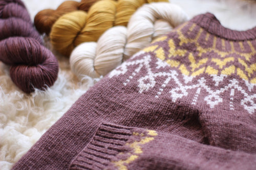 Dyed to Order • Dreyma Sweater Kit • Aubergine, Caramel, Honey, & Au Lait