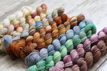 Load image into Gallery viewer, Dyed to Order • Entire Anne of Green Gables Collection Mini Skeins