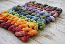 Load image into Gallery viewer, Dyed to Order • Entire Harry Potter Collection Mini Skeins