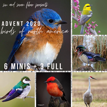 Load image into Gallery viewer, 2020 Advent Calendar • 6 Mini Skeins + 3 Full Skeins