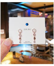Load image into Gallery viewer, Temperament Elegant / Autumn and winter light luxury earrings