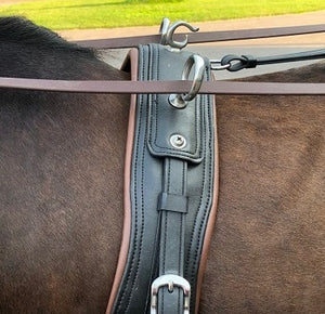 Placement of the Driving Saddle