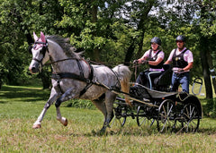 Marathon Carriage | Midwest Custom Carriages