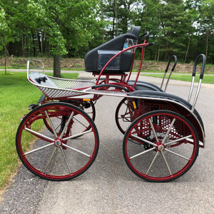 Lightning Marathon Carriage | Midwest Custom Carriages