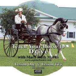 Teach Your Horse to Drive DVD