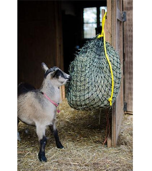 Texas Hay Net Slow Feeder | IVC Carriage