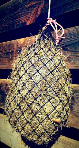 Texas Haynet Small Hay Net
