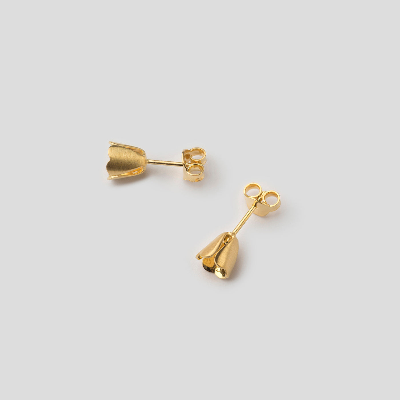 gold padauk studs on side on white background