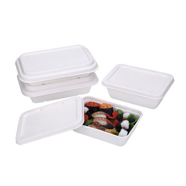 750ml 1000ml 1300ml Bagasse Sugarcane Rectangular Food Container with Sugarcane Lid/PET Lid