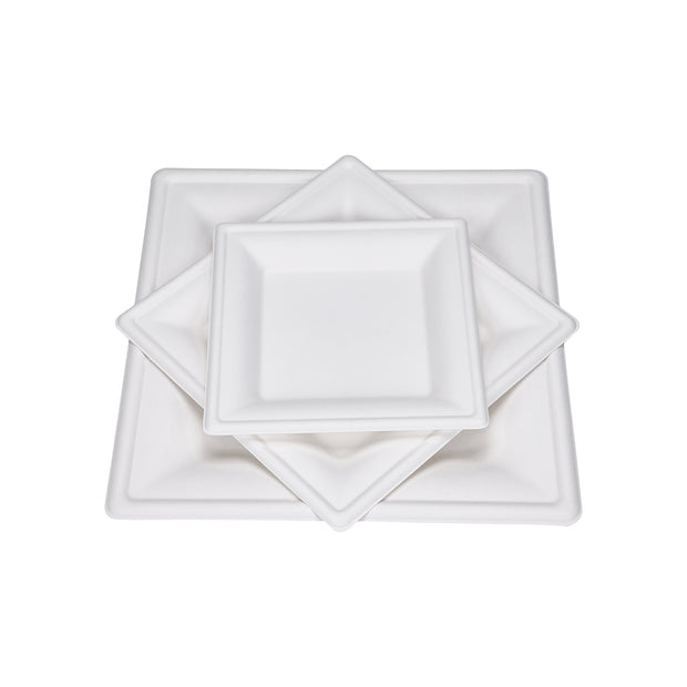 Sugarcane Bagasse Plate Bowl Retail Package
