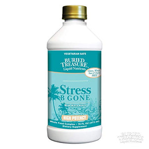 Stress B Gone With Kava Kava -- 16 fl oz