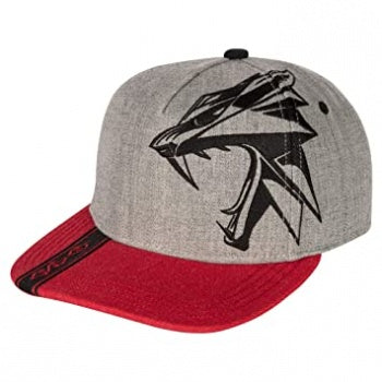 The Witcher Slays Snap Back Hat