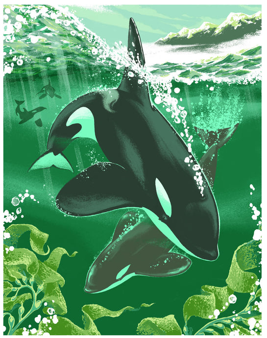 Emerald Orcas - Ltd Edition Fine Art Print