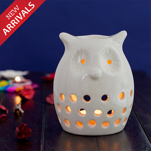 Owl Shaped Essential Oil Burner With Two Fragrance